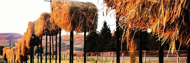Flying Straw Bales Kickstarter